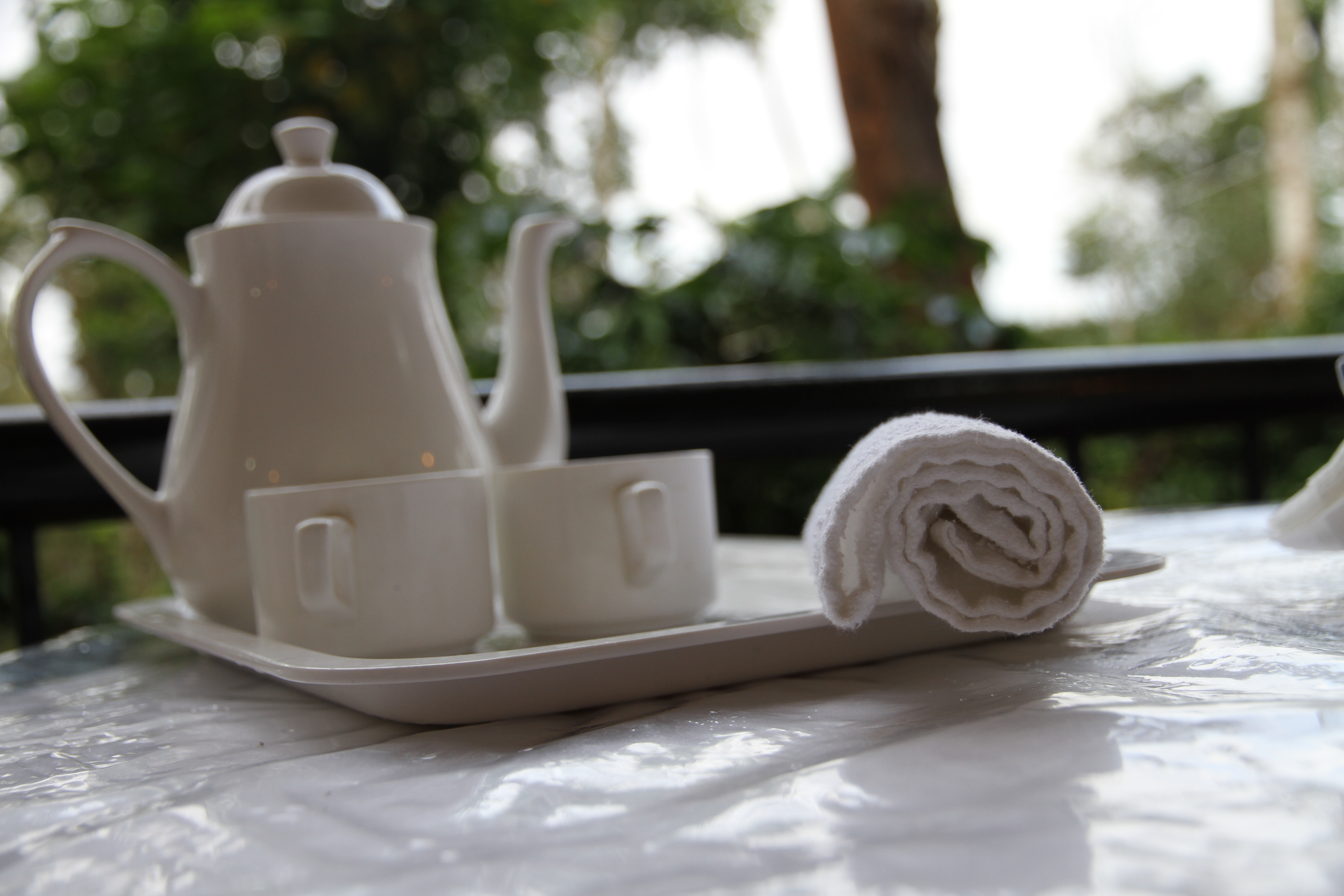 estate stay coorg